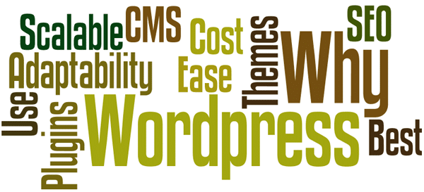 Why WordPress is The Best CMS for Almost Everything?