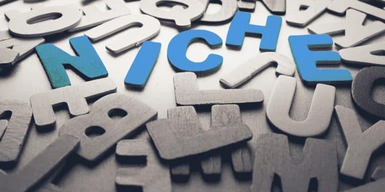Can SaaS Companies Work in Niche Framework?