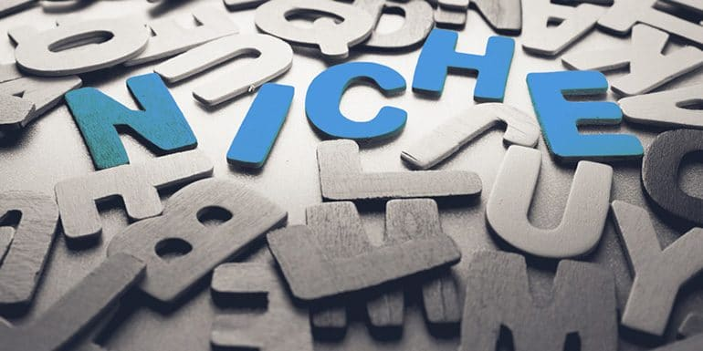 What is Niche Freelancing?