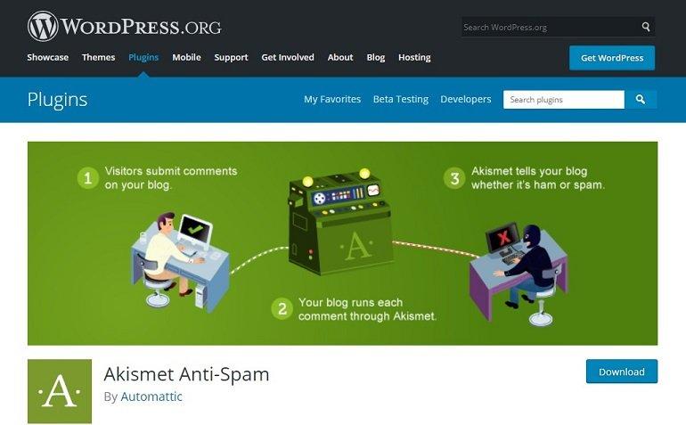 Akismet Anti Spam WordPress plugin