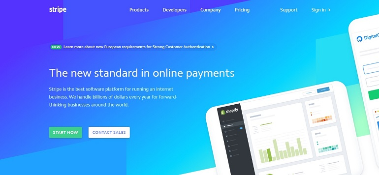 Stripe online payment processing system