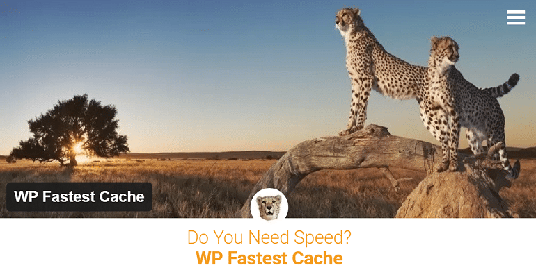 wp-fastest-cache-homepage